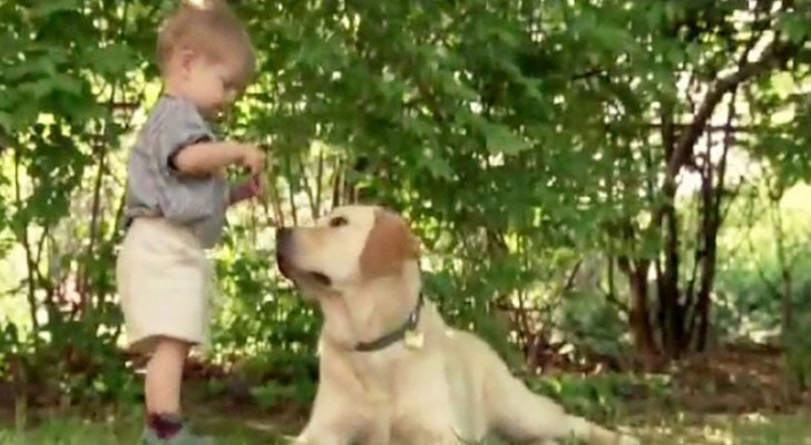 What this child and his dog do, is beyond imagination !