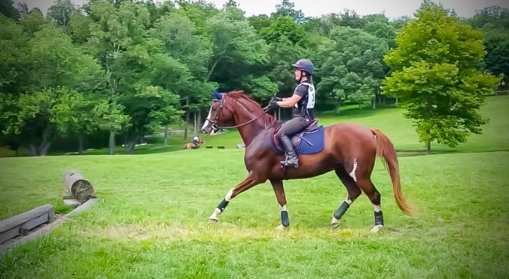 Al principio el caballo no logra superar la fosa, pero cuando encuentra el coraje...Siii!!