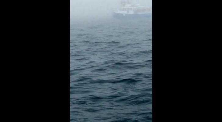 Sie filmen das Meer, doch ab 0:08 passiert etwas, das sie nie vergessen werden