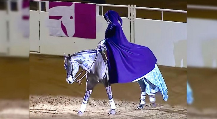 She enters the arena with her beautiful horse: when she takes off her coat, they're all speechless