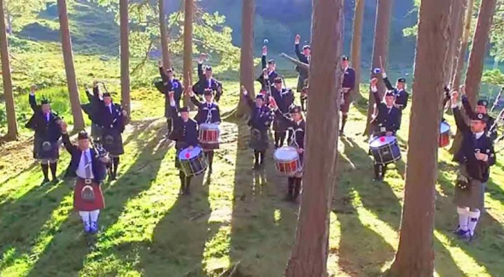 Estes músicos no bosque nos dão de presente um espetáculo de música e imagem