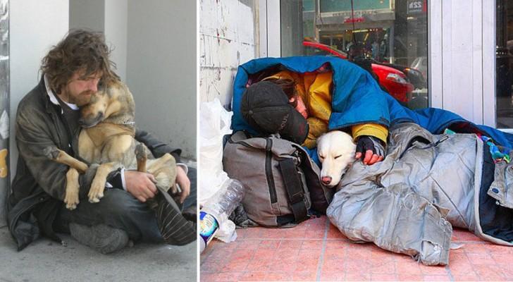 10 cani che amano alla follia i loro padroni anche se sono nullatenenti