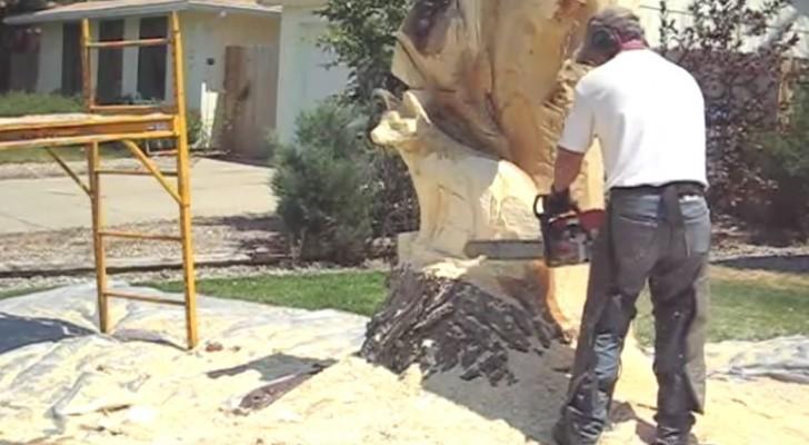 Hij begint een oude boom te bewerken met een kettingzaag. Het eindresultaat? Je gelooft je ogen niet!