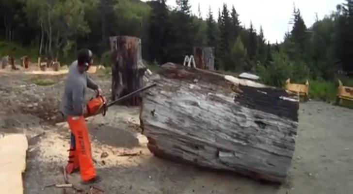 Liga a serra elétrica e começa a cortar: daquele enorme tronco emerge uma obra de arte!