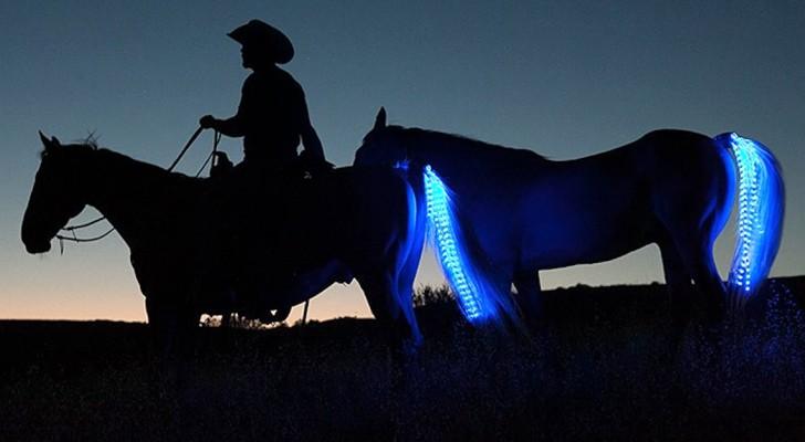 Ecco a voi l'ingegnosa invenzione che può salvare la vita di ogni cavallo