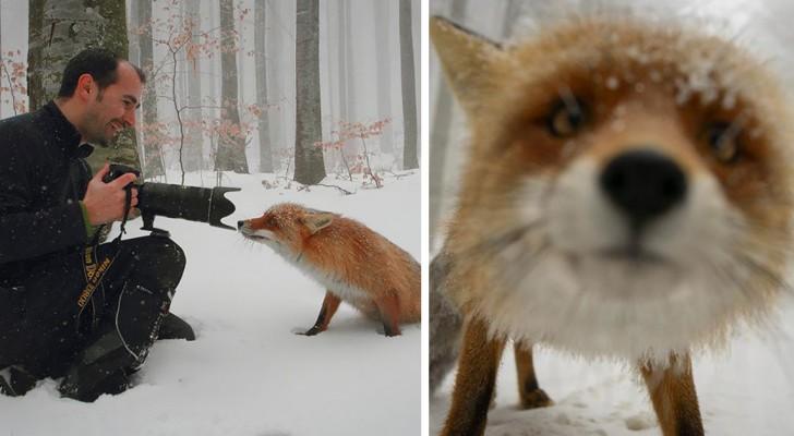 Ecco perché fotografare la natura è il lavoro più bello del mondo