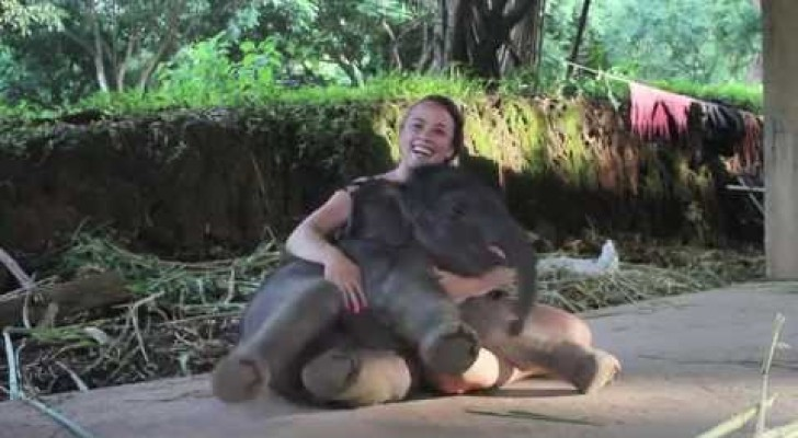 A two weeks old elephant sits next to her and gives her an UNFORGETTABLE moment