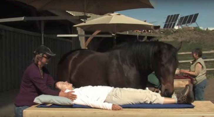 Een vrouw gaat liggen op een tafel houd je ogen gericht op het paard wat hij doet is - Tafel klik clac huis van de wereld ...