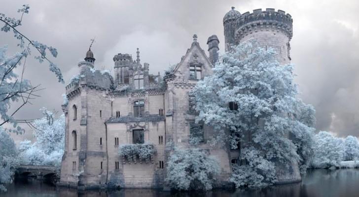 La naturaleza se apropia de un maravilloso castillo real frances: el resultado es magico