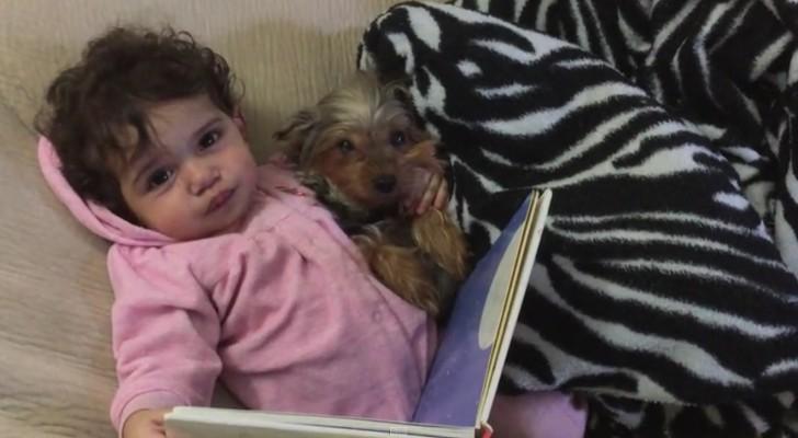Dit meisje en haar hond hebben een onweerstaanbaar schattig avondritueel!