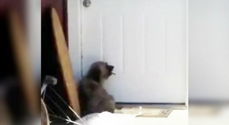 ass licking er sucht ihn düsseldorf