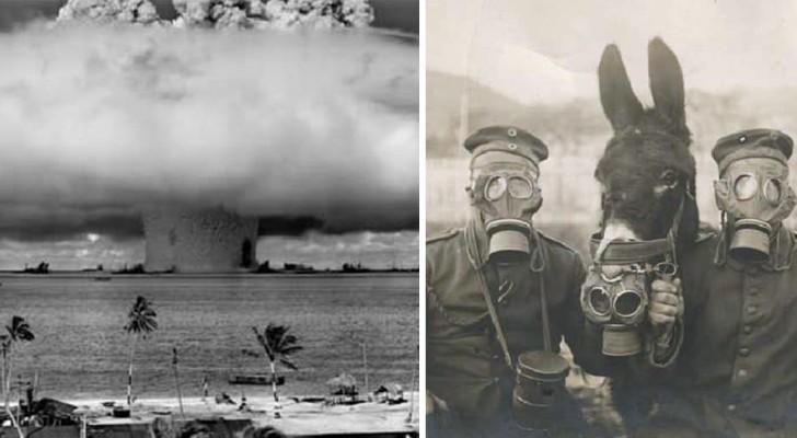 Voici quelques photos qui ont capturé des moments historiques.