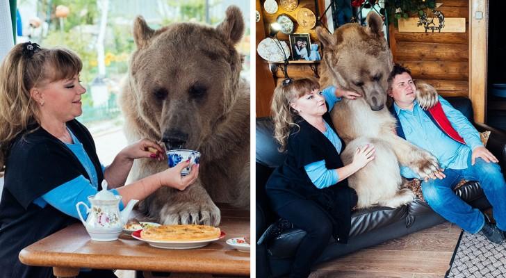 Trovano un orso orfano nella foresta: ecco come vivono 23 anni dopo
