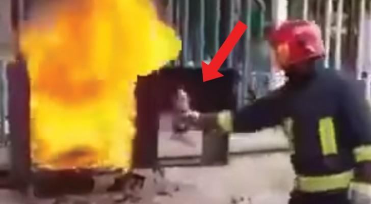 Un pompier prend une bouteille de Coca-Cola: sa façon de l'utiliser est GRANDIOSE!