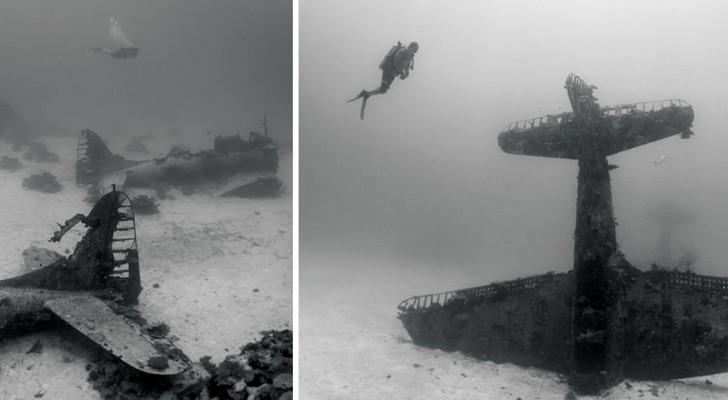 Une instructrice de plongée découvre un cimetière d'avions au milieu du Pacifique. Mais il y a une explication