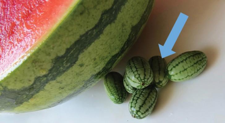 Sembra un piccolo cocomero, ma non lo è: ecco a voi il frutto più grazioso - e sconosciuto - che esista