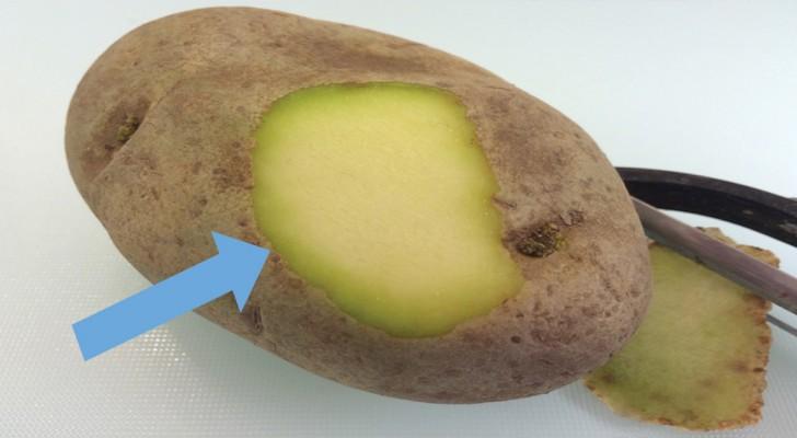 manger des pommes de terre vertes ou avec les germes c 39 est vraiment dangereux pour la sant. Black Bedroom Furniture Sets. Home Design Ideas