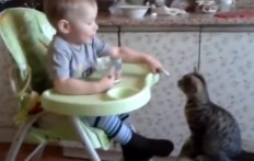 Cute baby feeds his cat friend !