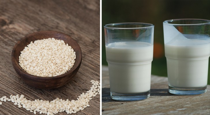 Latte di sesamo: scoprite le sue incredibili proprietà e come prepararlo in casa