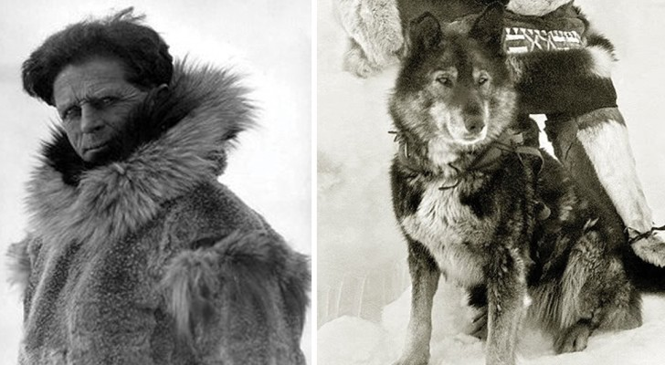 Ricordate il cane Balto, che salvò centinaia di vite in Alaska? Ecco come è andata VERAMENTE.