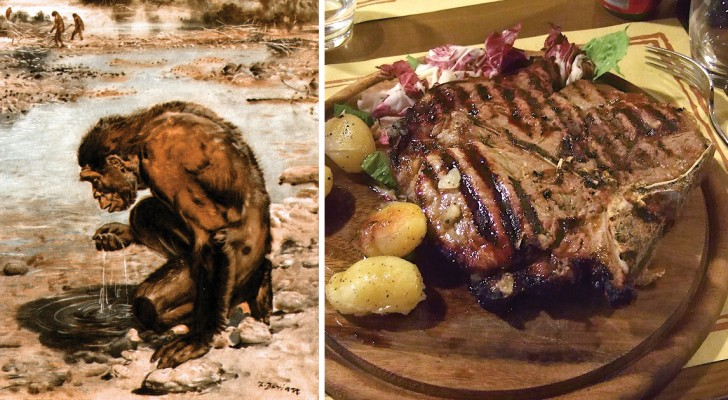 Ohne den Verzehr von Fleisch hätte die menschliche Evolution nie stattgefunden: Hier die Studie, die das beweist