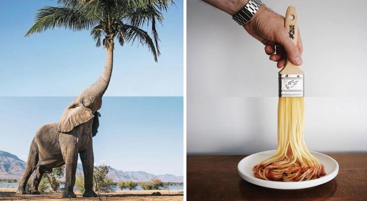 Créativité et sens de l'humour: ces photos mash-up originales vous amuseront