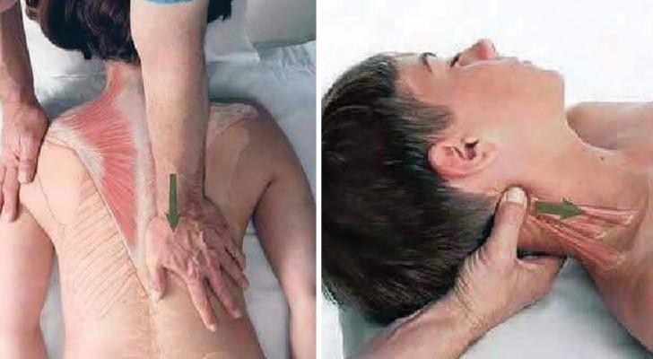 Massage relaxant : voici un guide simple pour apprendre les bases