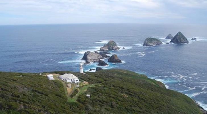 je krijgt betaald om op dit onbewoonde eiland in Tasmanië te wonen: zou je meedingen voor een plek?
