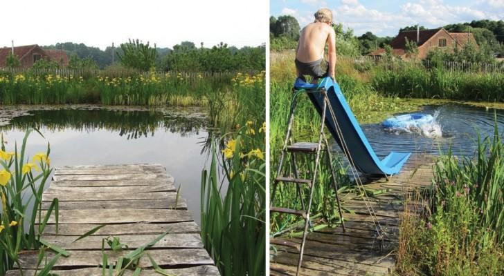 On dirait un étang, mais c'est une piscine à tous les effets: sans chlore et respectueuse de la nature!