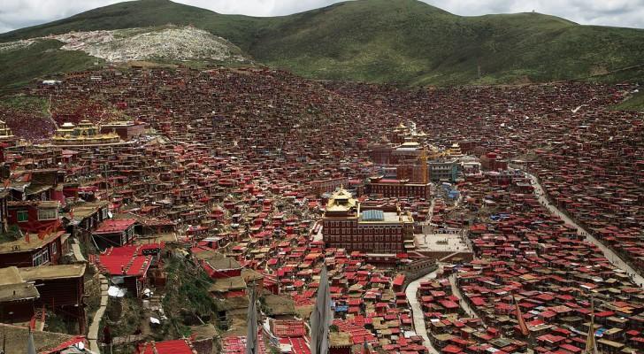 Een enorm dorp om deze tibetaanse school heen: zo leven 40,000 monniken op 4,100 meter hoogte