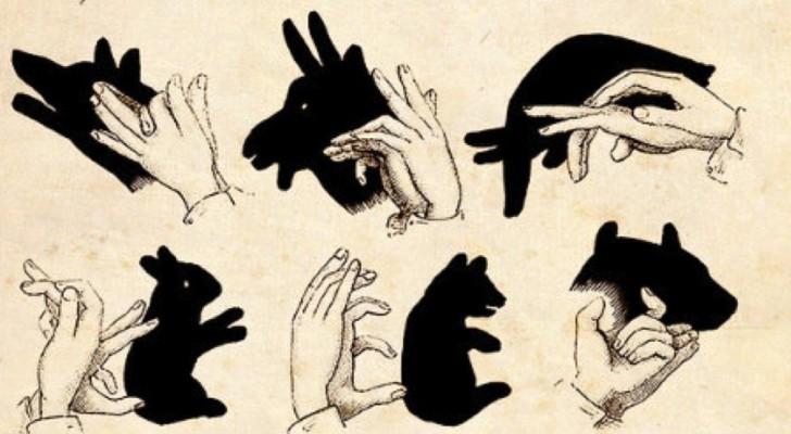 Alcune cose non andrebbero dimenticate, le ombre cinesi sono una di queste!