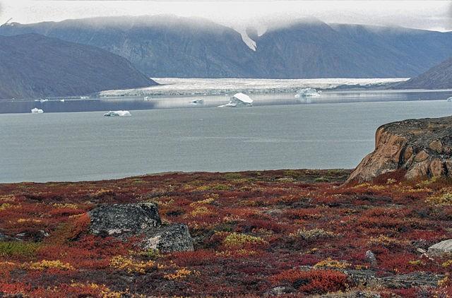 I ghiacciai si sciolgono e si scongelano virus e batteri: ecco le malattie nascoste che tornano alla luce