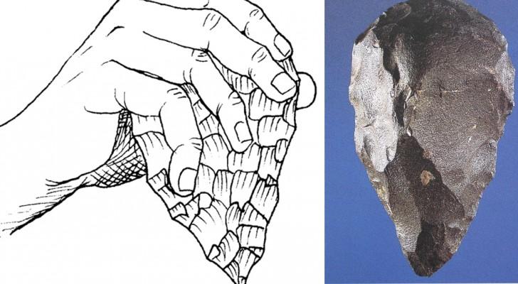 Une enquête qui a duré des millénaires: le premier meurtre de l'histoire a été découvert et il date d'il y a 430 000 ans