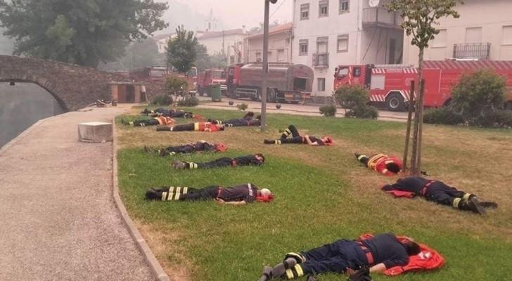 En regardant de près cette photo, vous comprendrez qui sont les vrais héros de notre monde