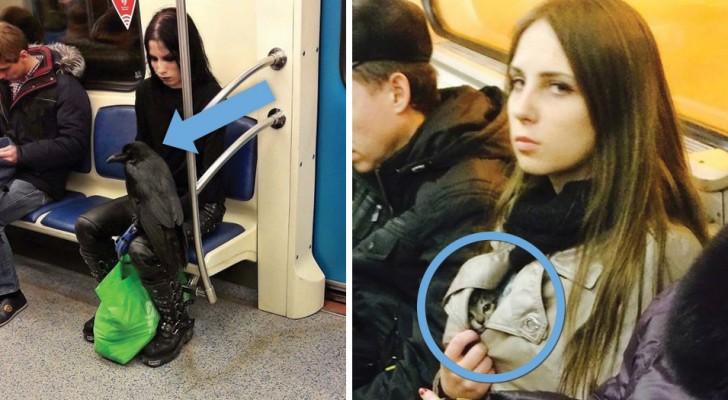 Les 19 personnes parmi les plus bizarres que l'on peut rencontrer dans le métro