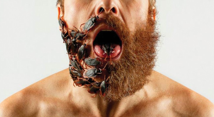 Een microbioloog laat zien dat een lange baard viezer kan zijn dan... een toilet