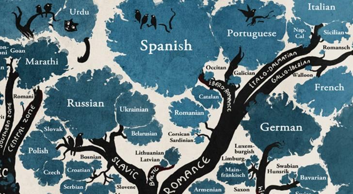 Questo albero che mostra la connessione tra le lingue cambierà la tua visione del mondo