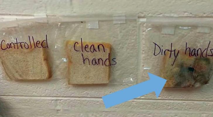 Est-il important de se laver les mains? L'expérience de cette maîtresse ne laisse aucun doute