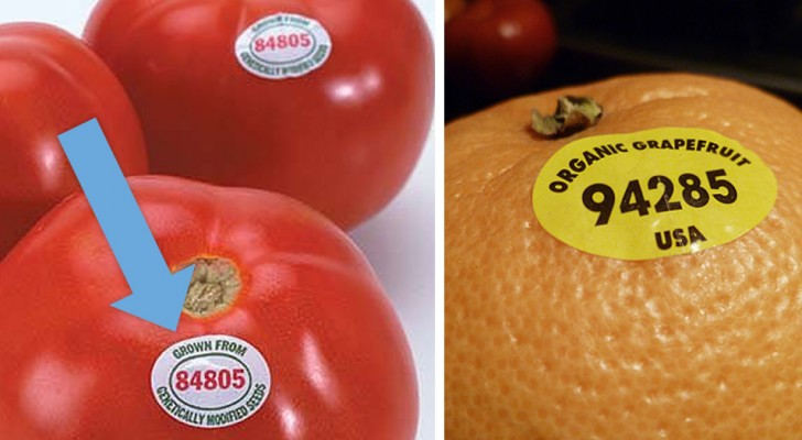 Come interpretare le misteriose cifre sulle etichette della frutta e capire cosa stai mangiando