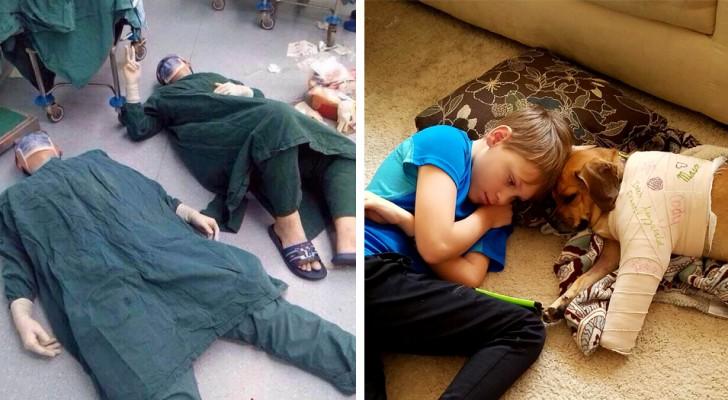 Diese 13 Bilder entwaffnender Zärtlichkeit werden euren Tag erleuchten