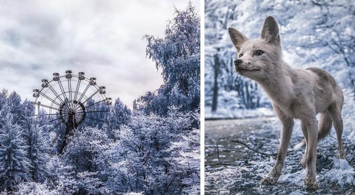 Spectaculaire infraroodfoto's van Tsjernobyl 31 jaar na de ramp