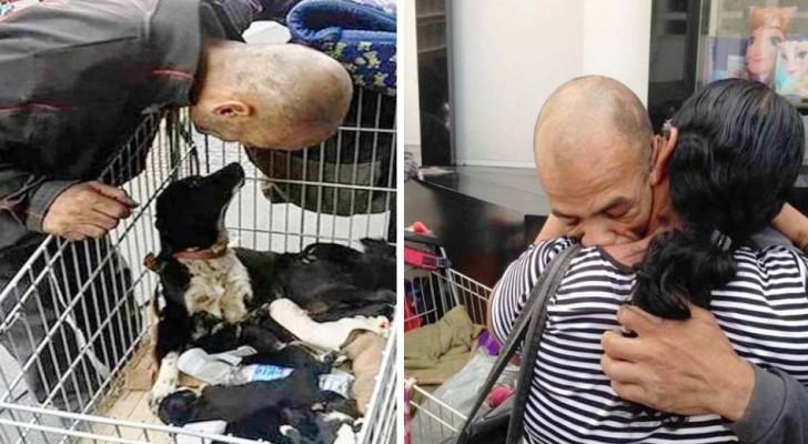 Un homme vend le peu qu'il a pour sauver son chien... en retour, il retrouve sa famille