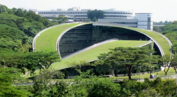8 edifici con il tetto