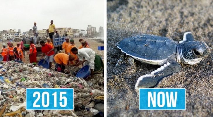 11 storie di persone che hanno fatto qualcosa di CONCRETO per il nostro pianeta