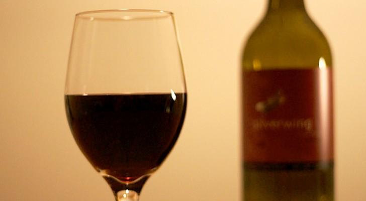 Eine umfangreiche Studie kehrt das um, was wir über Alkohol wussten: Er schadet immer, selbst bei niedrigen Dosen