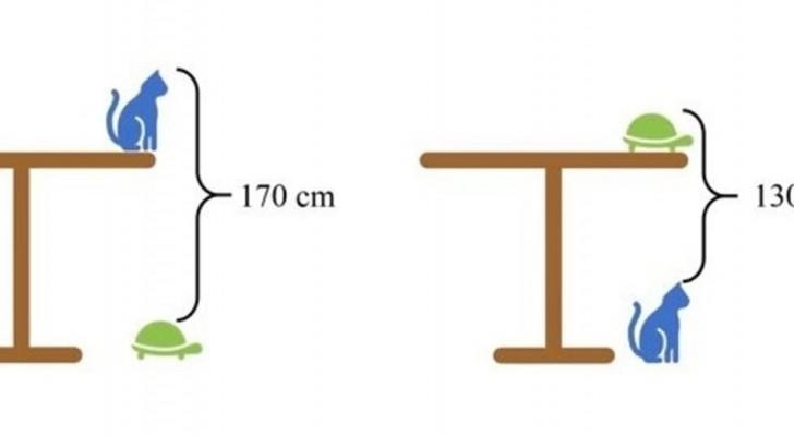 Hoe hoog is deze tafel? Zelfs de slimsten hadden moeite met dit probleem dat op een school in China werd voorgelegd