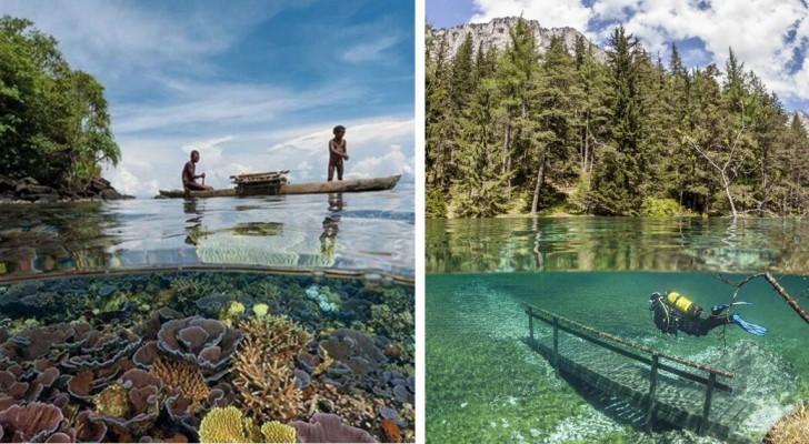 34 images nous révèlent ce qui se passe sous la surface de l'eau... souvent à notre insu !