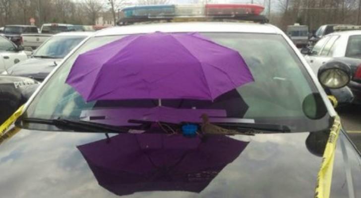 Les policiers fixent un parapluie sur la voiture... pour une raison très originale