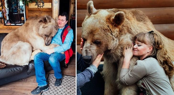 Un couple adopte un bébé ours : voici comment il vit 23 ans plus tard